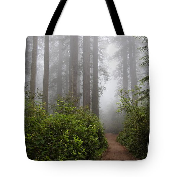 Redwood Grove Tote Bag