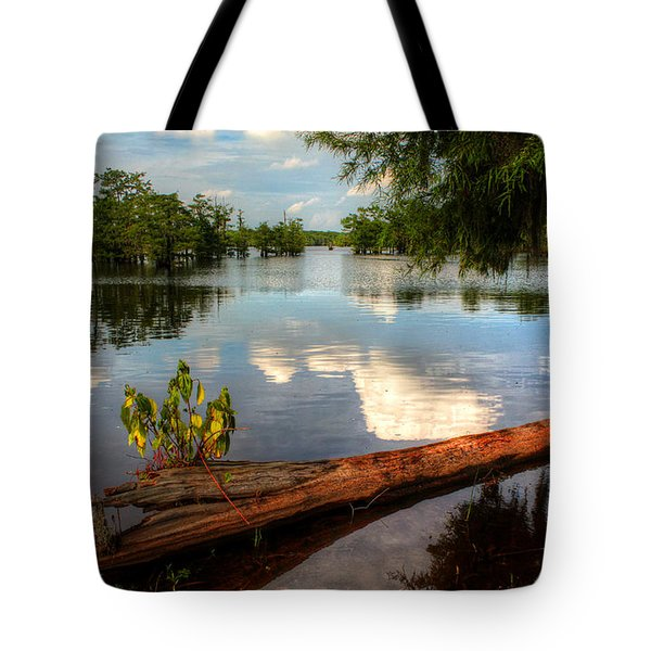 Reflection Tote Bag by Ester  Rogers