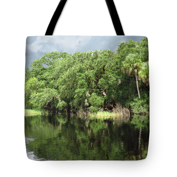 Tote Bag featuring the photograph Reflections by Rosalie Scanlon