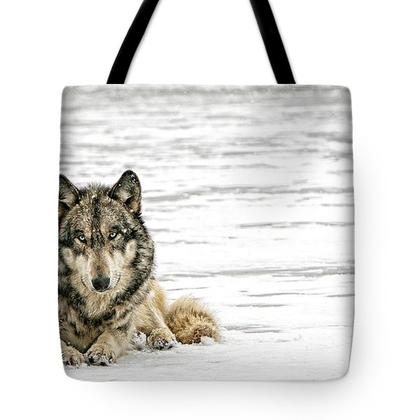 Relaxed Tote Bag by Shari Jardina
