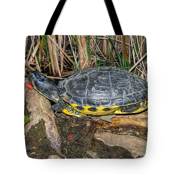 Resting Tote Bag by Robert Hebert