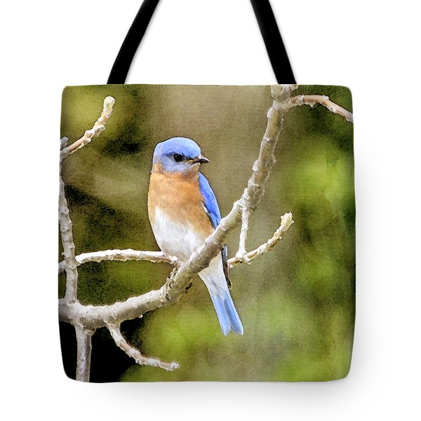 Tote Bag featuring the photograph Rhapsody In Blue by Betty LaRue