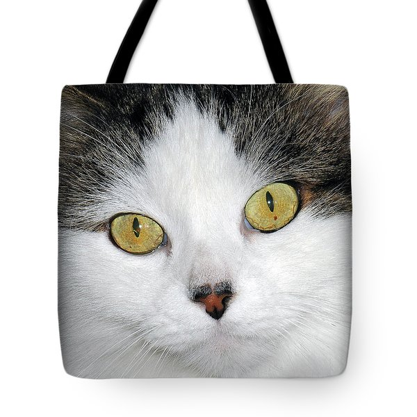 Ridley Tote Bag