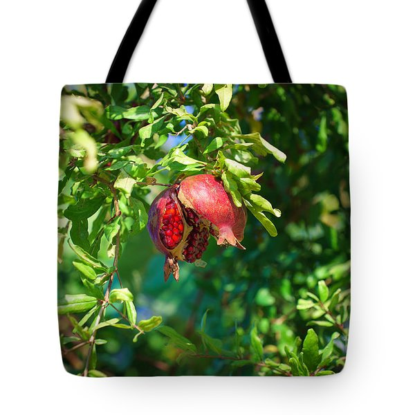 Ripe Pomegranate On The Tree In Jerusalem During Sukkoth Tote Bag