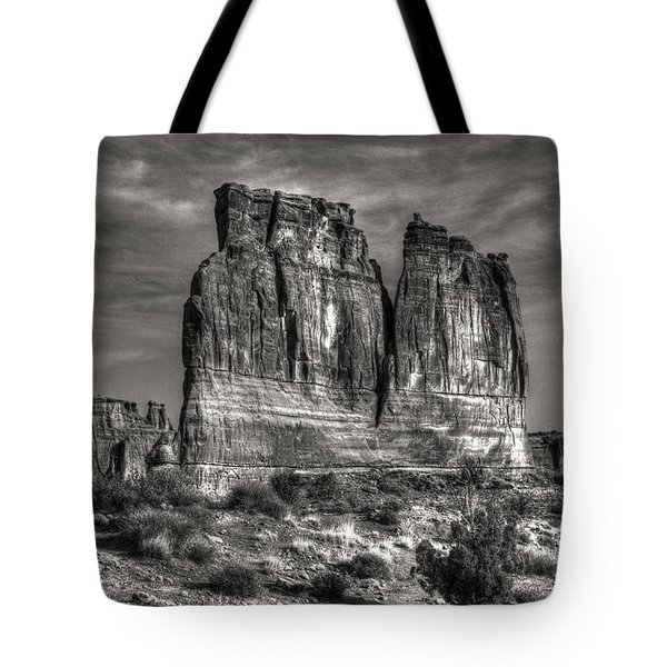 Tote Bag featuring the photograph Roadside Fins by ELDavis Photography