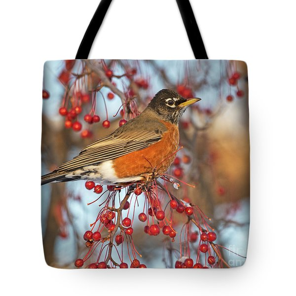 Tote Bag featuring the photograph Robin.. by Nina Stavlund