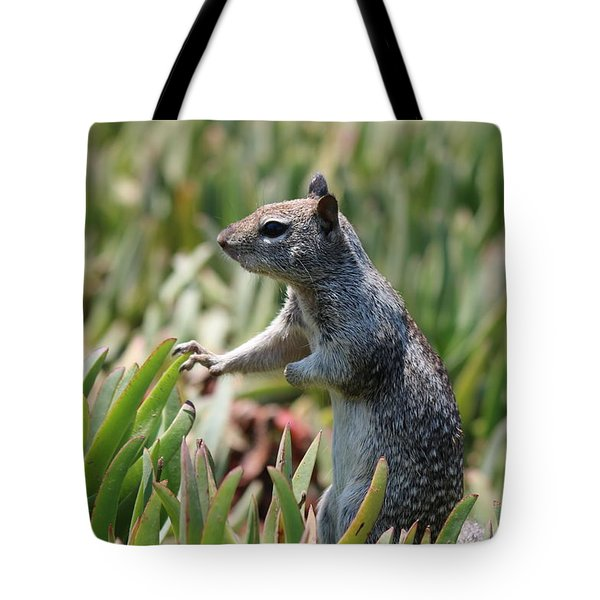 Rock Squirrel  Tote Bag by Christy Pooschke