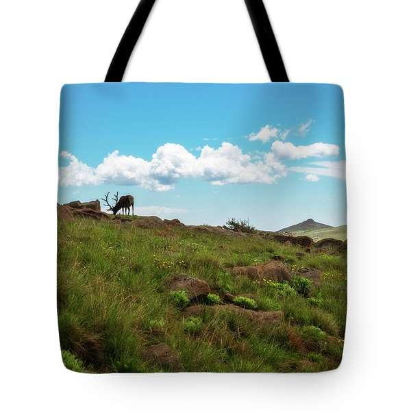 Tote Bag featuring the photograph Rocky Mountain Elk by Sharon Seaward