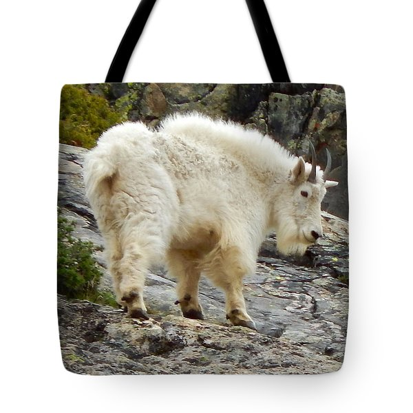 Rocky Mountain Goat Tote Bag