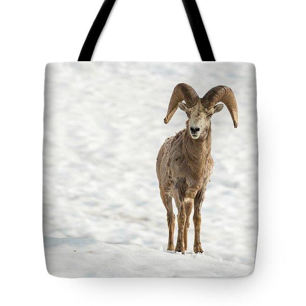 Rocky Mountain High Tote Bag