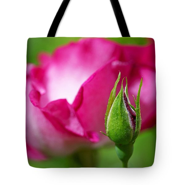 Tote Bag featuring the photograph Budding Rose by Rona Black
