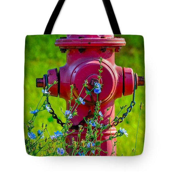 Rustic Red 2 Tote Bag