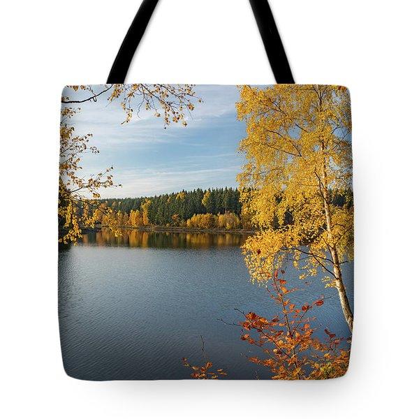Saegemuellerteich, Harz Tote Bag