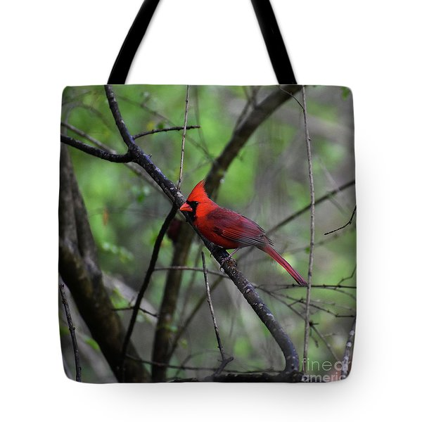 Tote Bag featuring the photograph Saint Louis by Skip Willits
