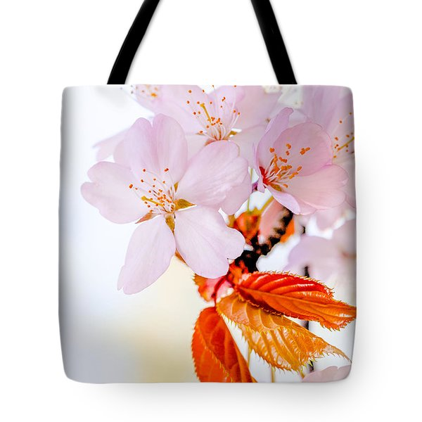 Tote Bag featuring the photograph Sakura - Japanese Cherry Blossom by Alexander Senin