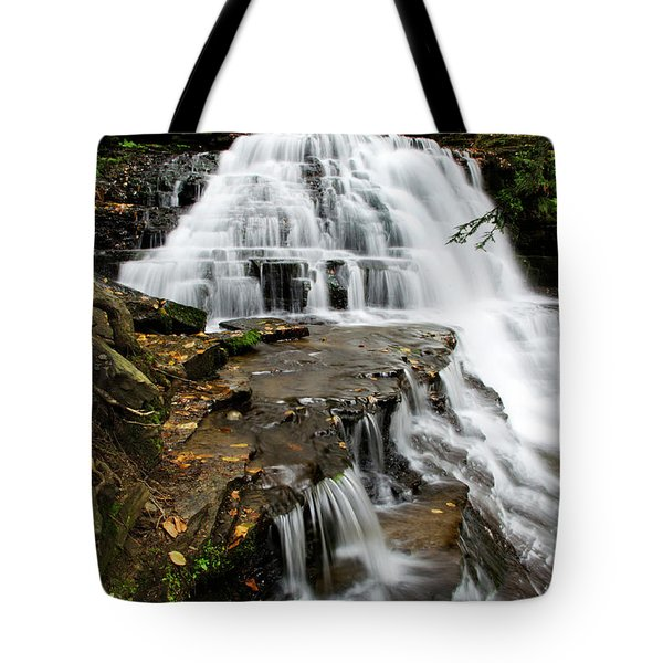 Salt Springs Waterfall Tote Bag