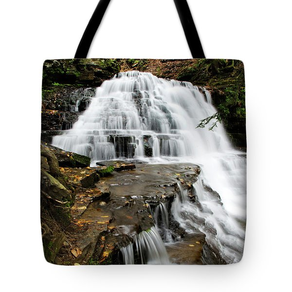 Tote Bag featuring the photograph Salt Springs Waterfall by Christina Rollo