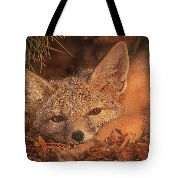 San Joaquin Kit Fox  Tote Bag by Brian Cross
