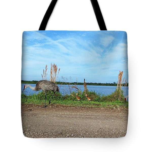 Sandhill Crane Family  Tote Bag by Chris Mercer