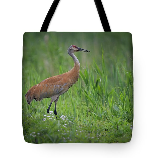 Sandhill Crane Tote Bag by Gary Hall