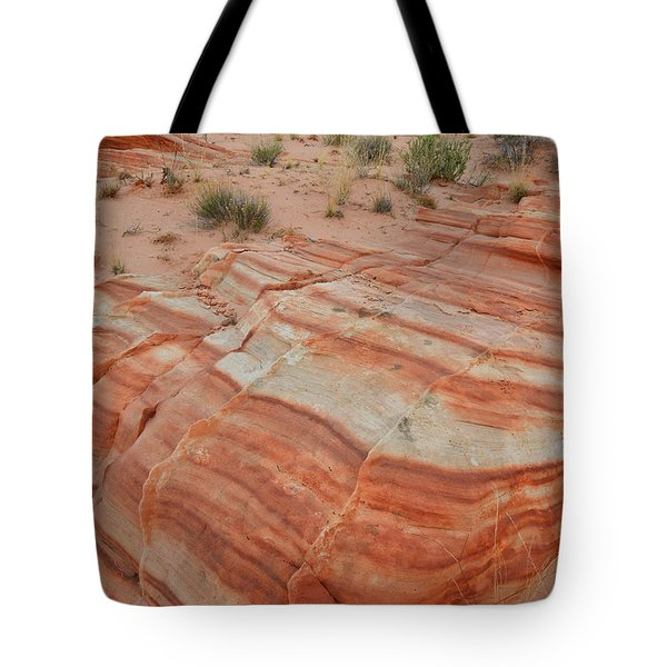 Tote Bag featuring the photograph Sandstone Stripes In Valley Of Fire by Ray Mathis