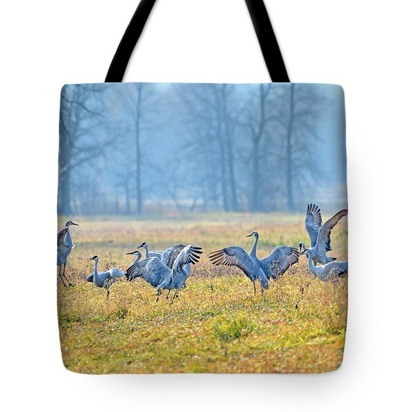 Tote Bag featuring the photograph Saturday Night by Tony Beck