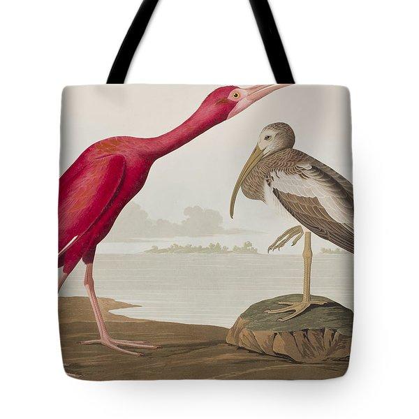 Scarlet Ibis Tote Bag by John James Audubon