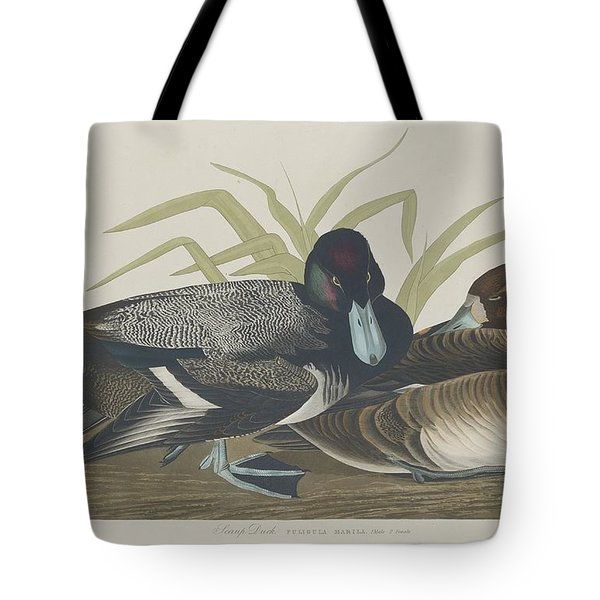 Scaup Duck Tote Bag