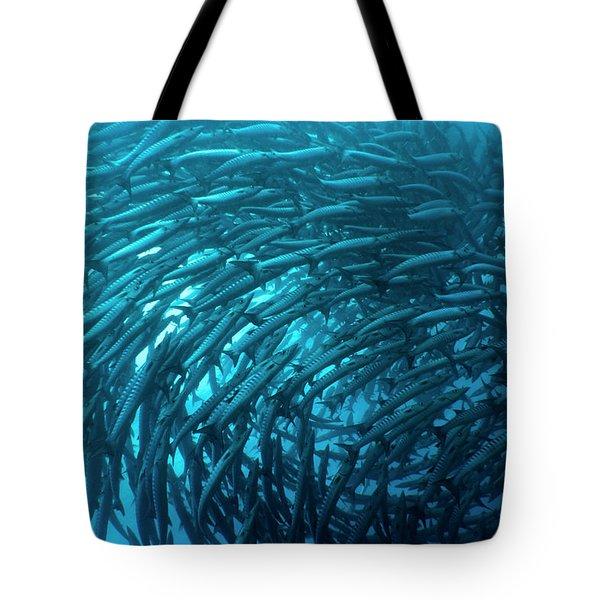 School Of Barracudas Underwater Tote Bag by MotHaiBaPhoto Prints