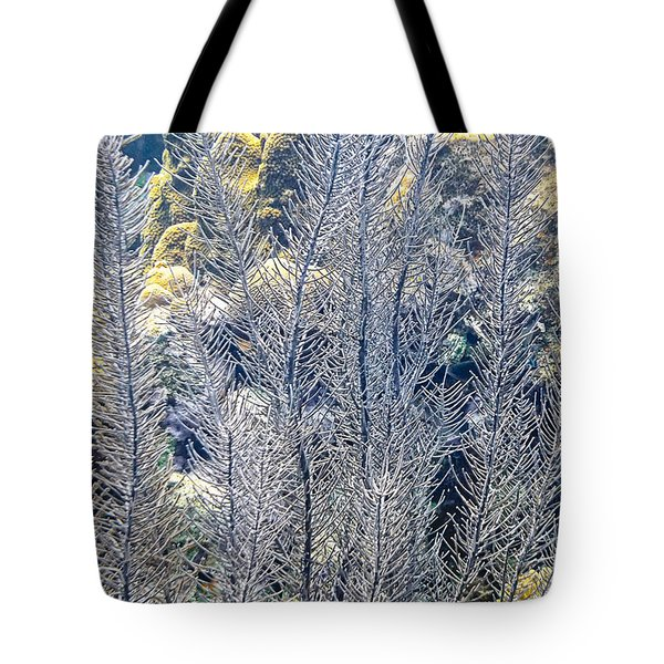 Tote Bag featuring the photograph Sea Plumes Coral by Perla Copernik