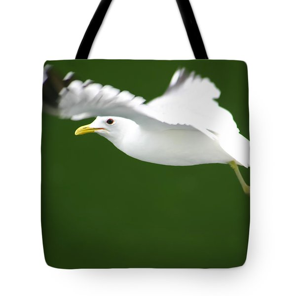 Tote Bag featuring the photograph Seagull At The Fjord by KG Thienemann