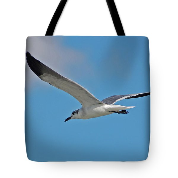 Tote Bag featuring the photograph 1- Seagull by Joseph Keane