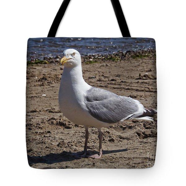 Seagull On Beach Tote Bag