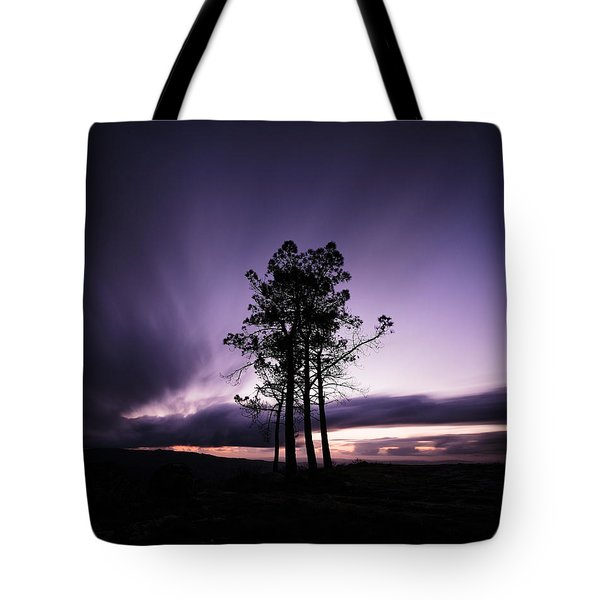 Tote Bag featuring the photograph Sentinels by Antonio Jorge Nunes
