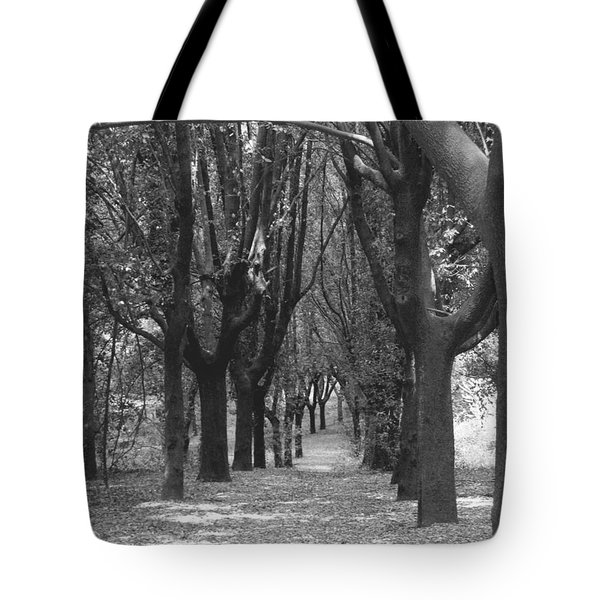 Serenity Tote Bag by Edgar Torres