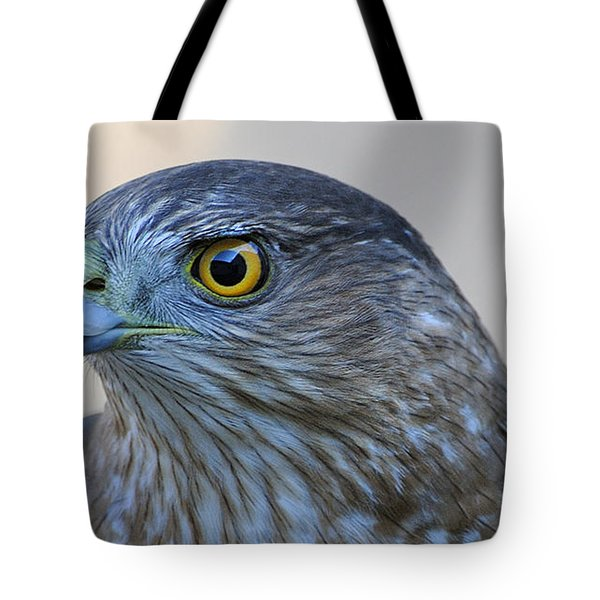 Sharp-shinned Hawk Tote Bag