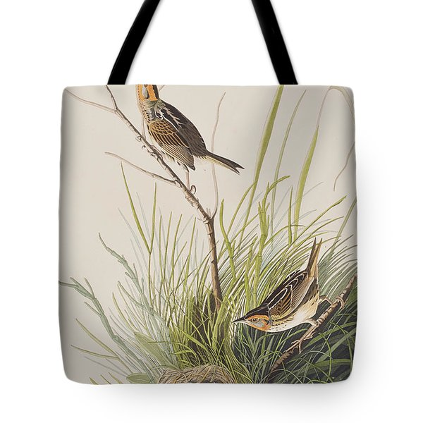 Sharp Tailed Finch Tote Bag by John James Audubon