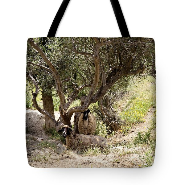 Sheltering  Tote Bag by Shirley Mitchell