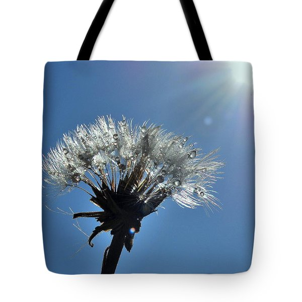 Tote Bag featuring the photograph Shining by Marija Djedovic