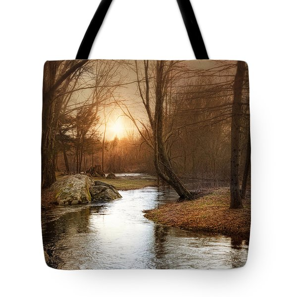Tote Bag featuring the photograph Silence Is Golden by Robin-Lee Vieira