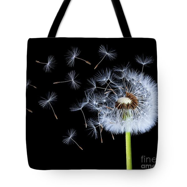 Silhouettes Of Dandelions Tote Bag