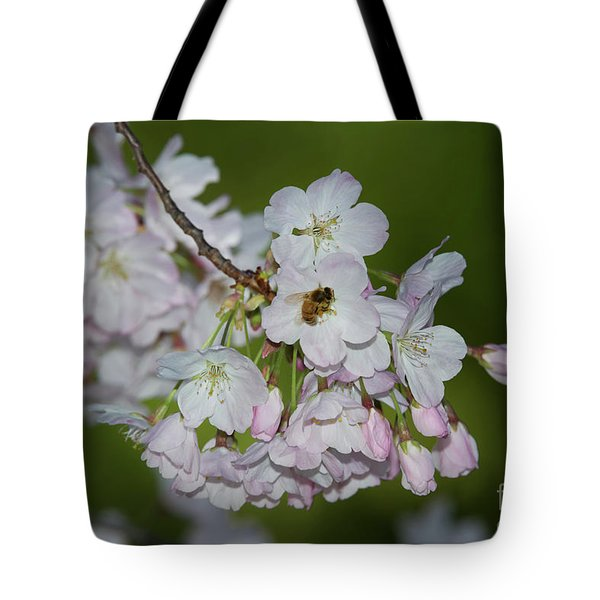 Silicon Valley Cherry Blossoms Tote Bag by Glenn Franco Simmons