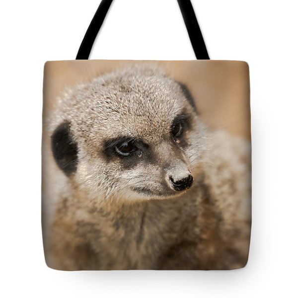 Simples Tote Bag by Chris Boulton