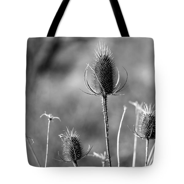 Simply Thistle Tote Bag