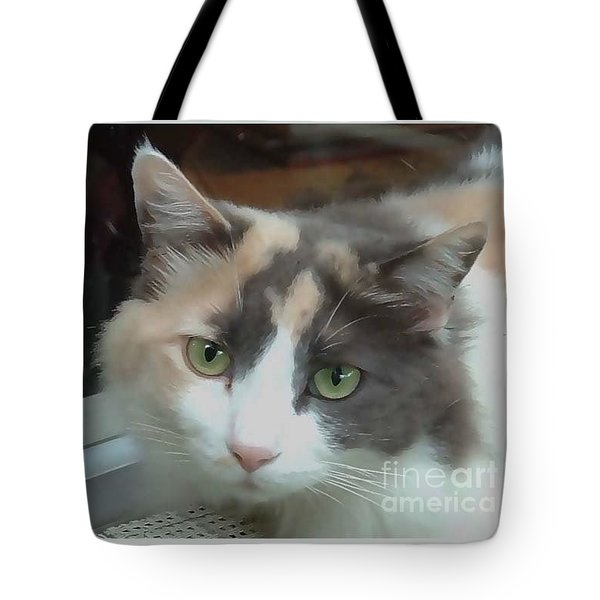 Sister Tote Bag by Fred Jinkins