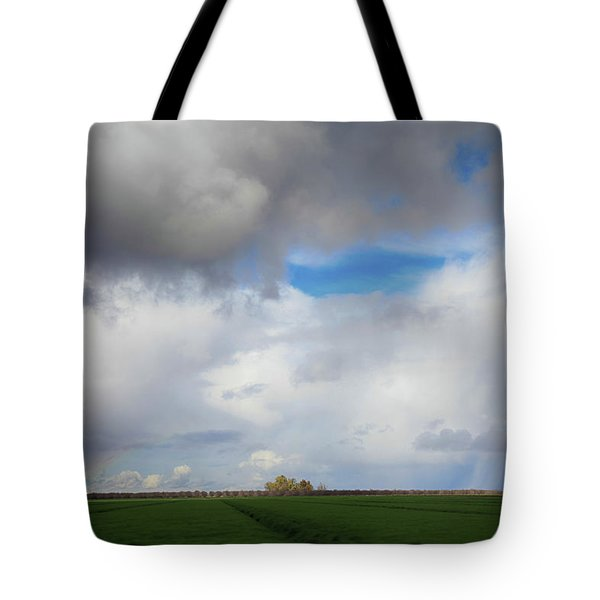 Skyward Tote Bag by Laurie Search
