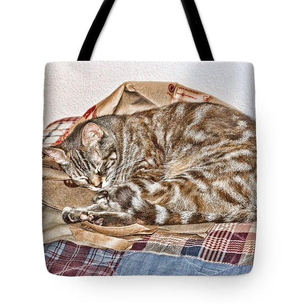 Sleeping Tote Bag