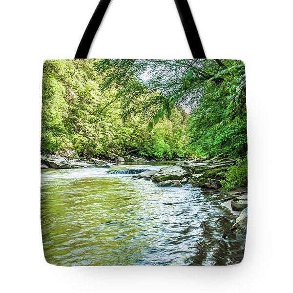 Slippery Rock Gorge - 1920 Tote Bag