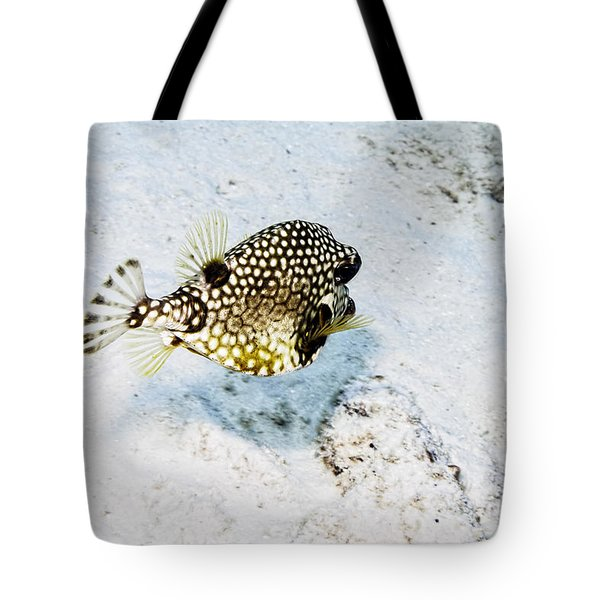 Smooth Trunkfish Tote Bag