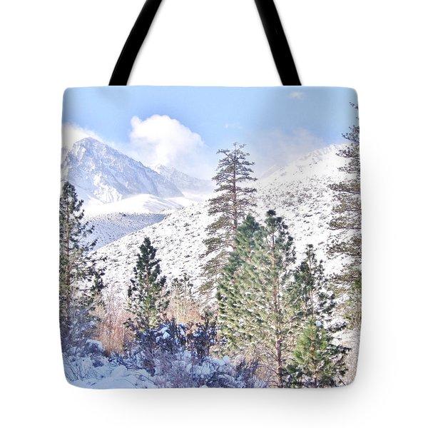 Canyon Snow Tote Bag